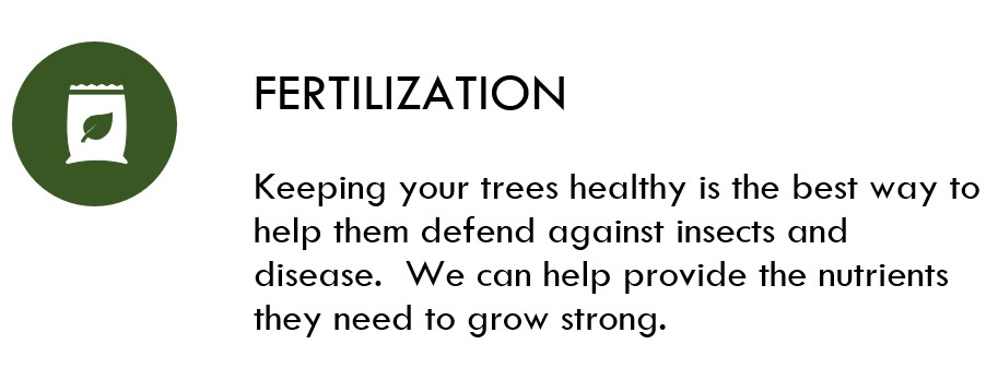 Fertilization Icon.jpg