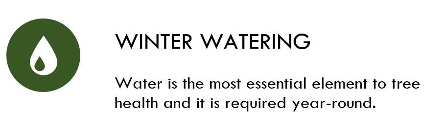 Winter Watering Icon.jpg