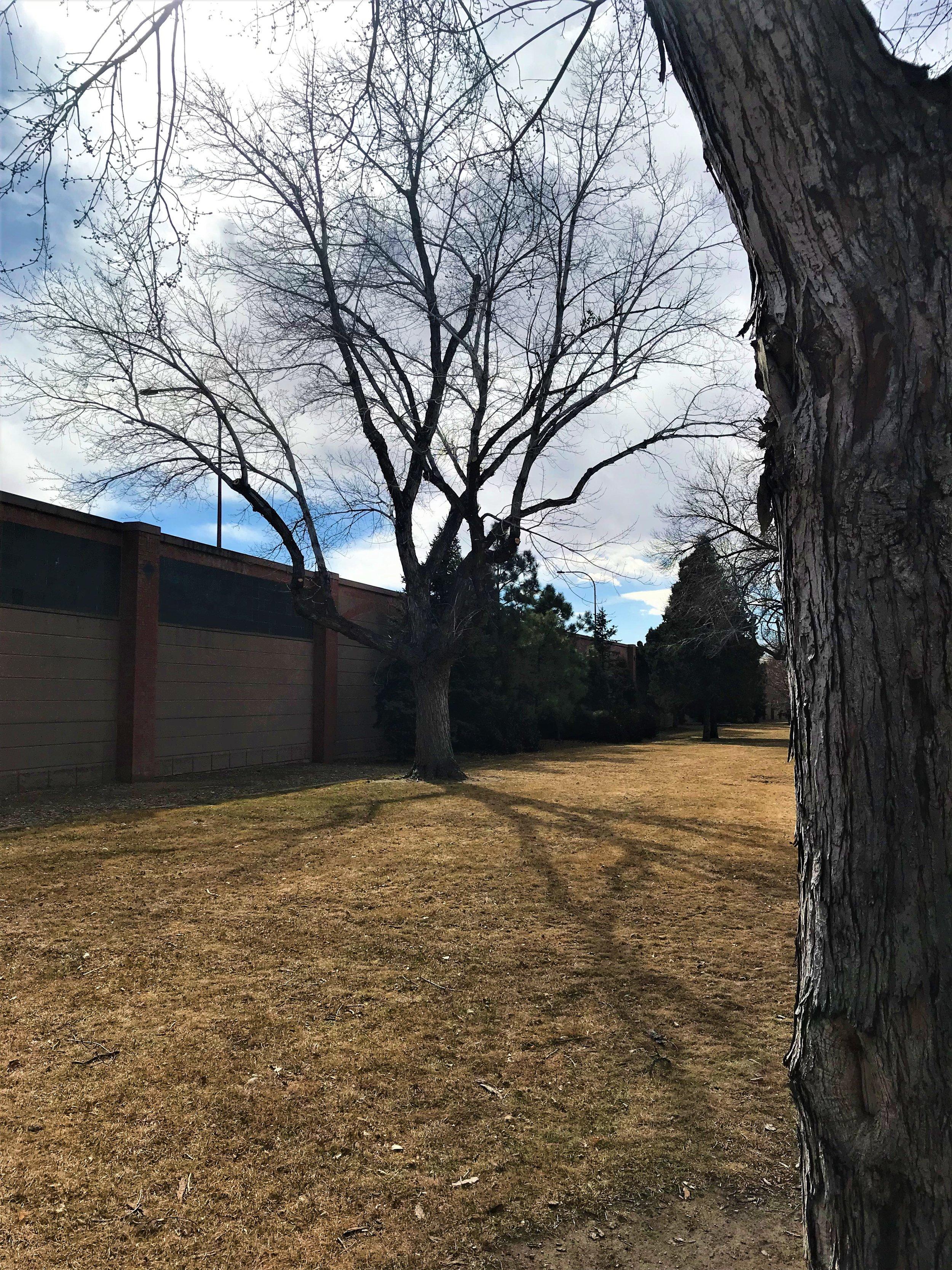 City of Colorado Springs - Mesa Springs Greenway