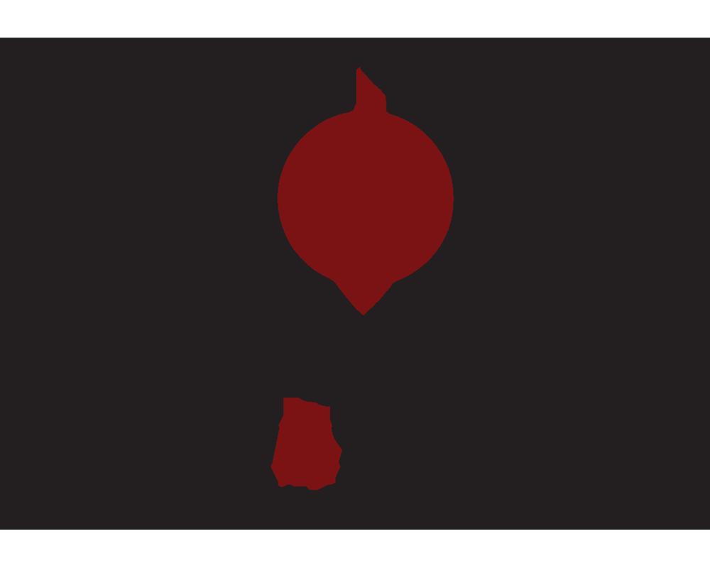 Logo_DSF_web.png