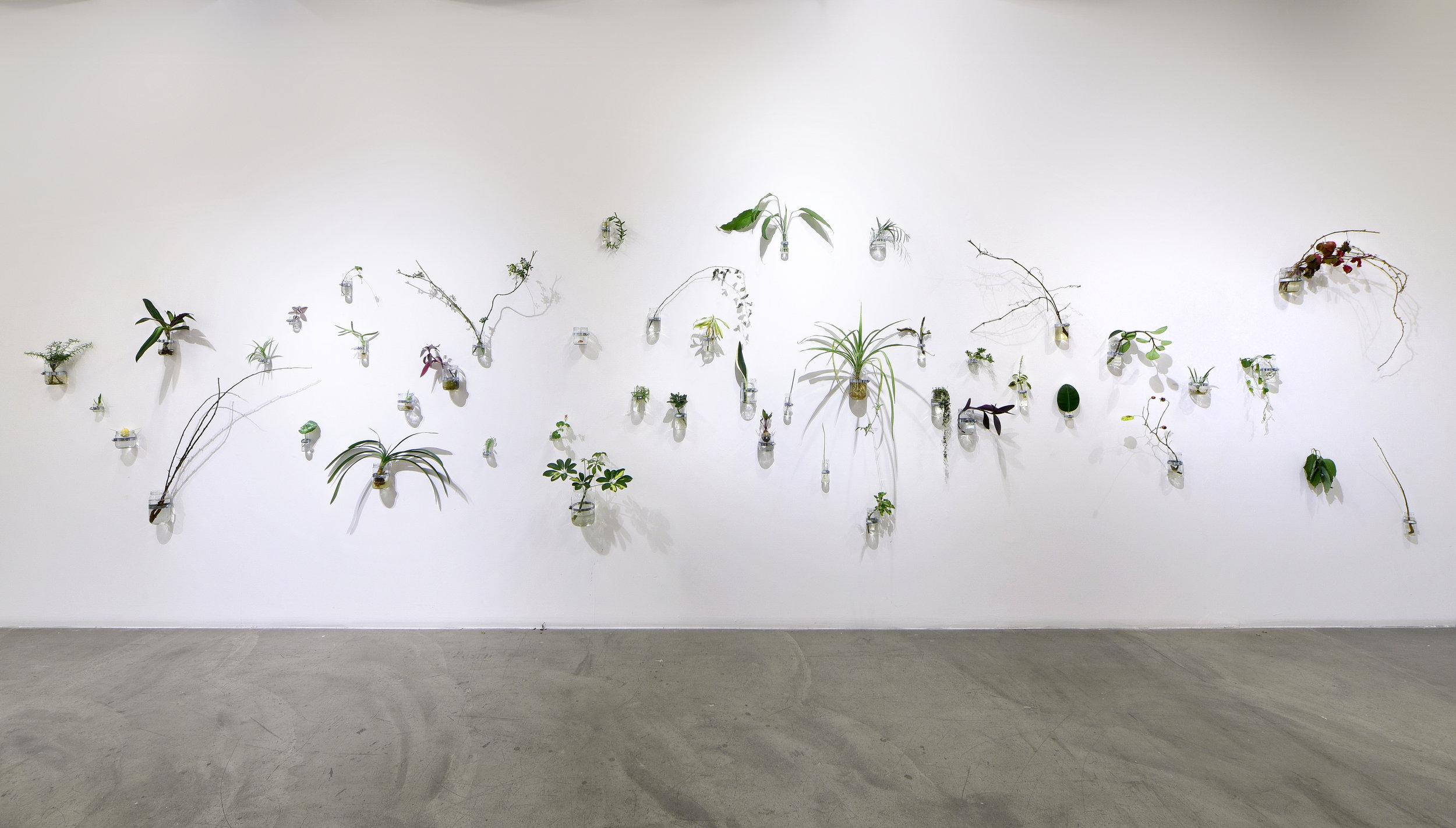 Sibel Horada, An Internal Garden. Courtesy the artist and Depo Istanbul. Photograph: Yusuf Coşkun