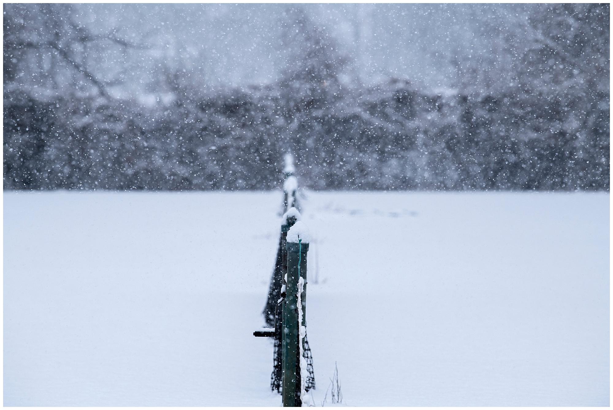 KielinskiPhotographers_snowday_tenniscourts_2018-01-01_0011.jpg
