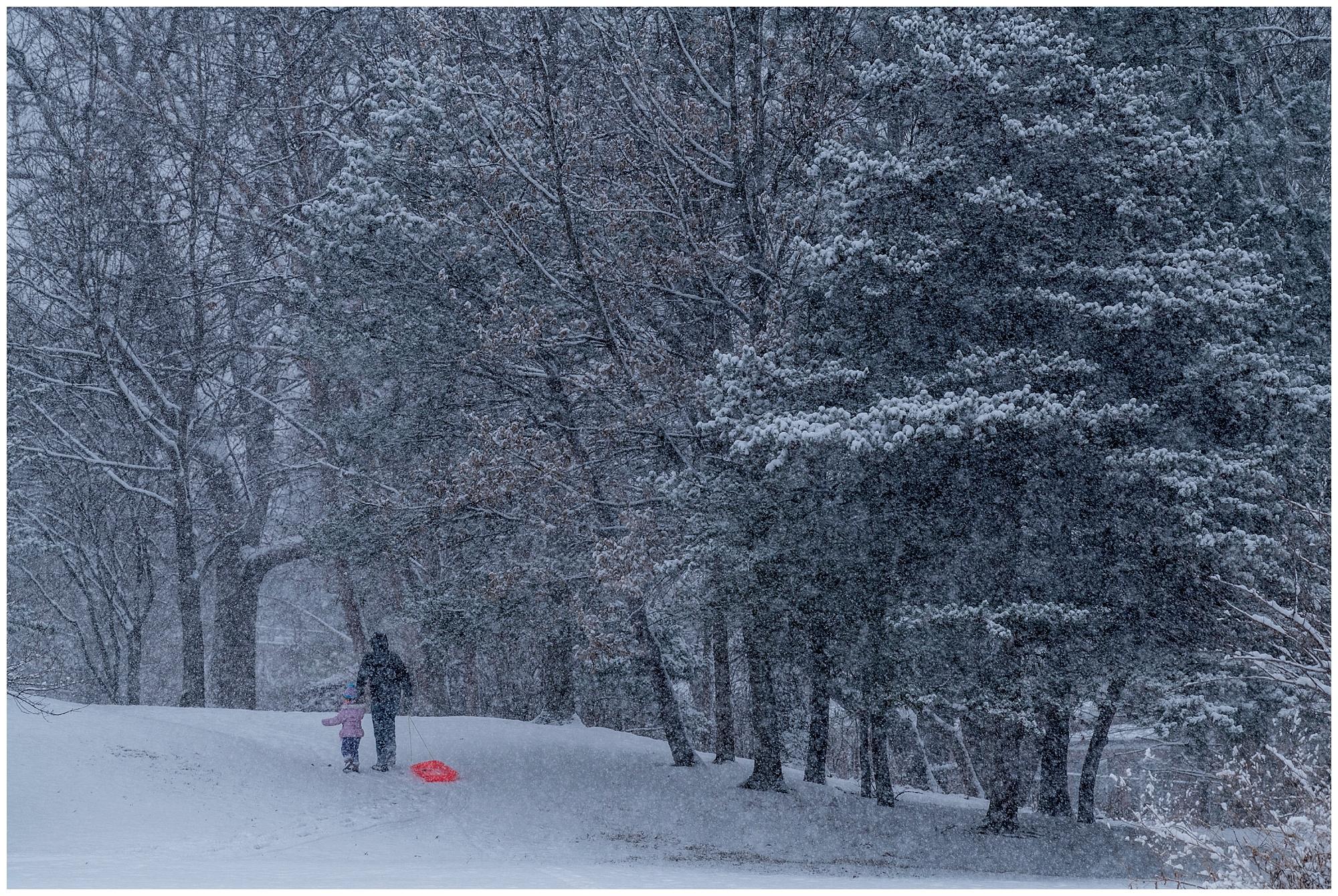KielinskiPhotographers_snowday_gorgaspark_2018-01-01_0014.jpg