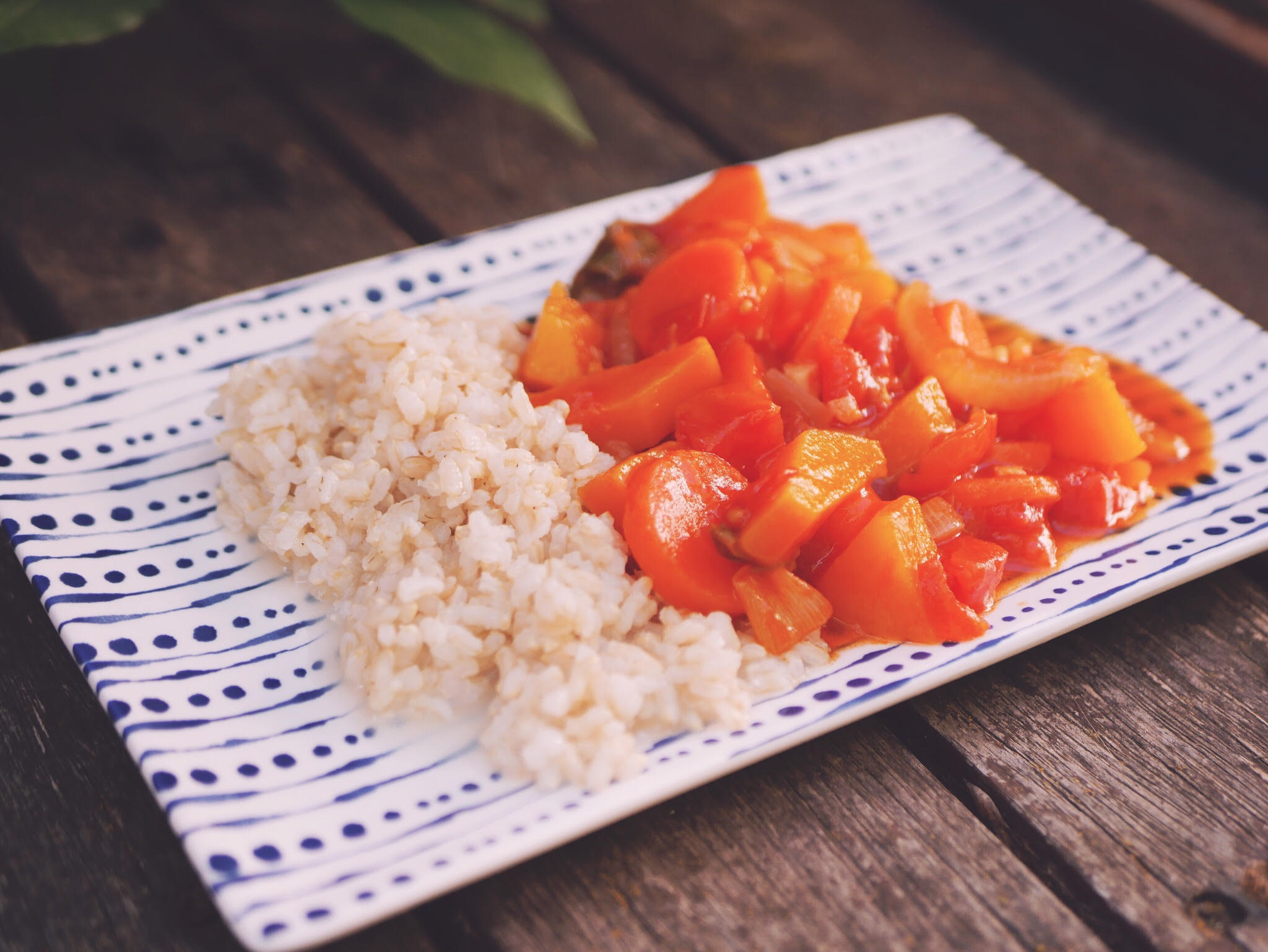 Cold Summer Stew with rice