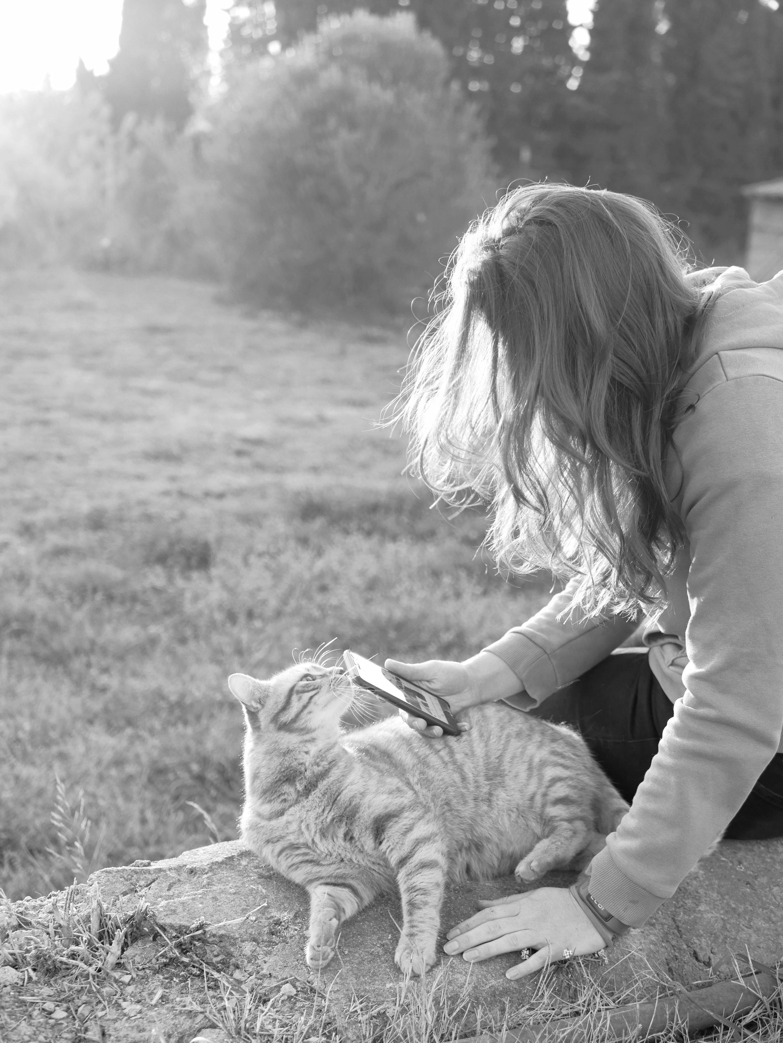 Cat mum with Arthur Cat and phone