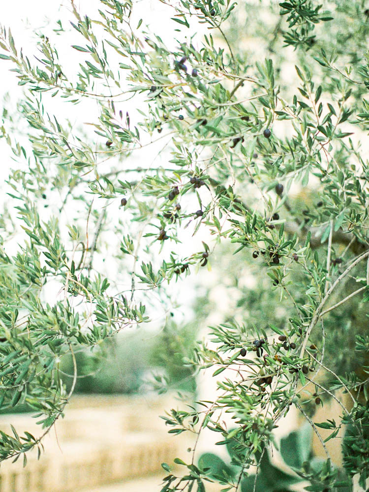 Amy O'Boyle Photography- Destination & UK  Italy Fine Art Film Wedding Photographer- Borgo Egnazia Wedding-44.jpg