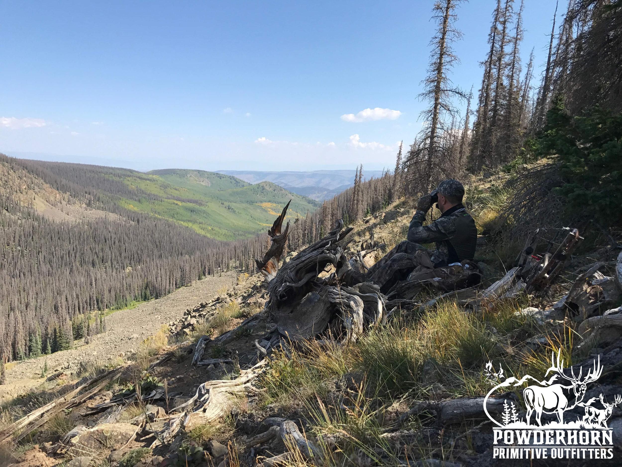hunting colorado wilderness