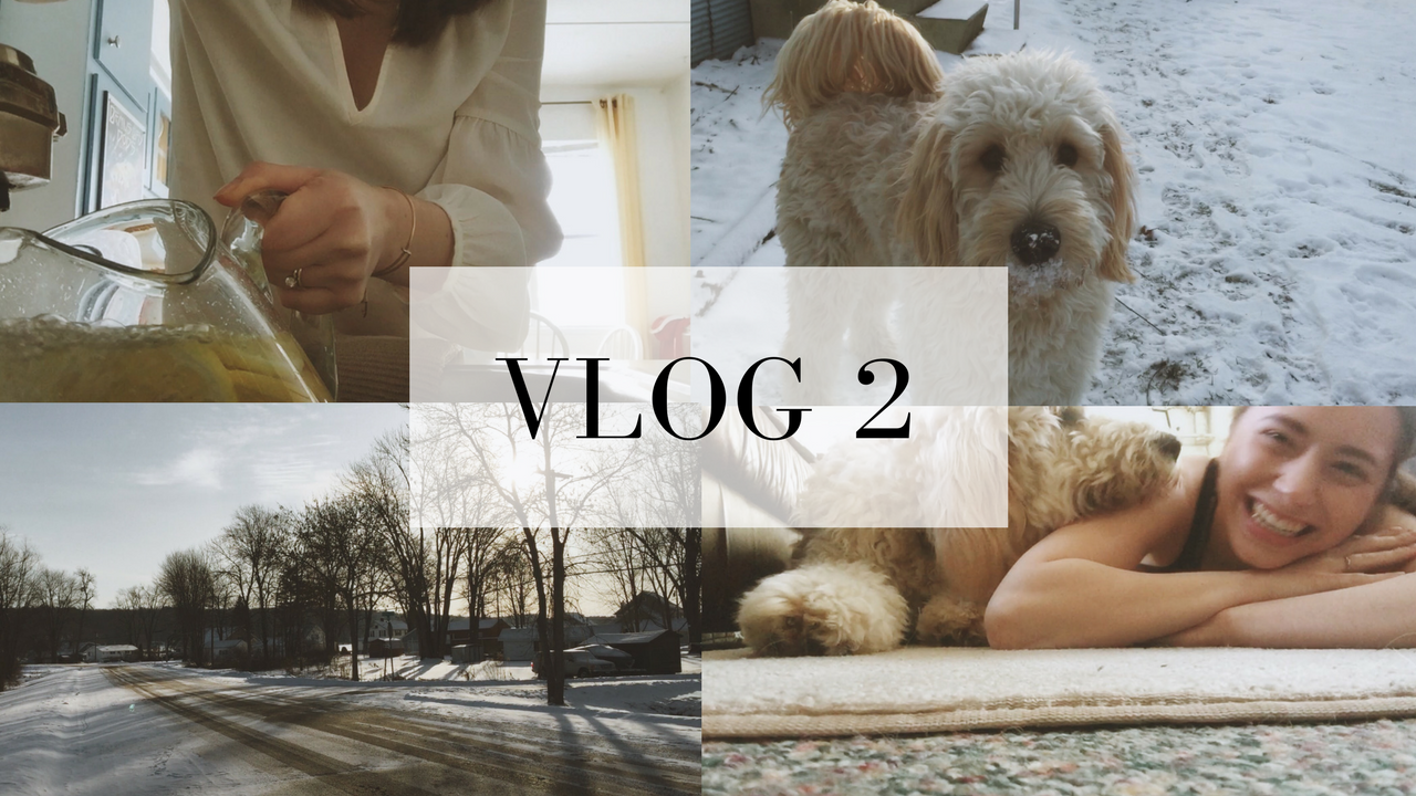 A weekend at home with the fuzzy bear and why I love vlogging for businesses...
