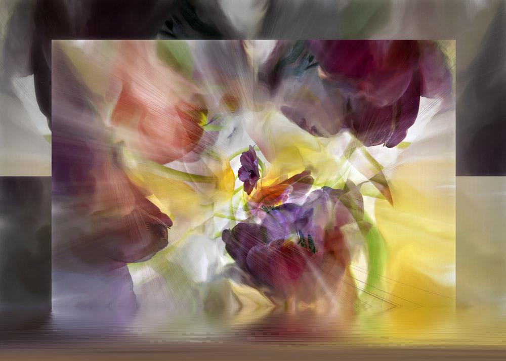 Tulips #59, 2008