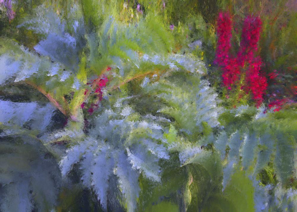 Delphinium & Ferns, 2007