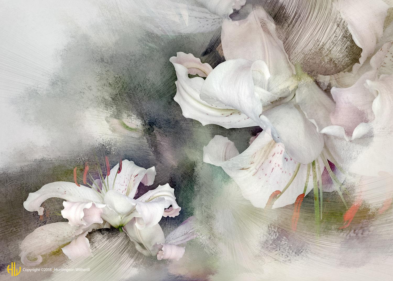 Lilies #90, 2007