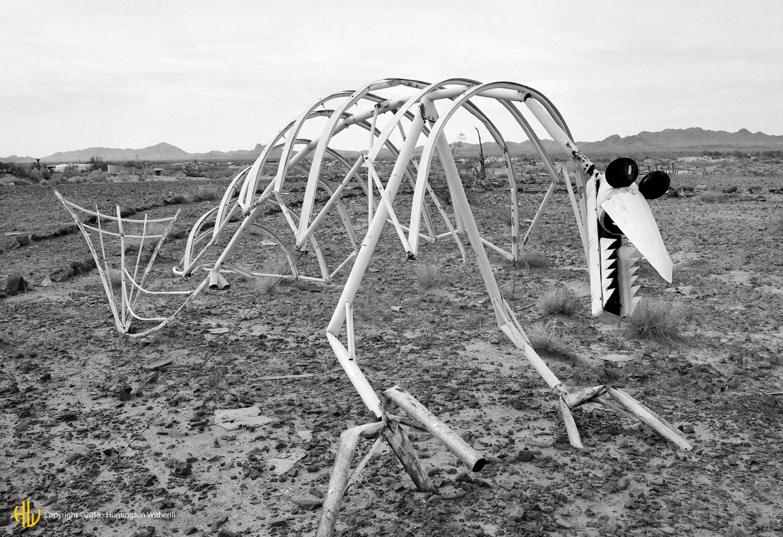 Dinosaur, AZ, 1998