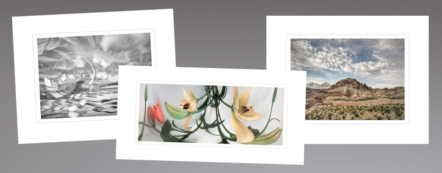 Limited Edition Archival Pigment Ink Prints -