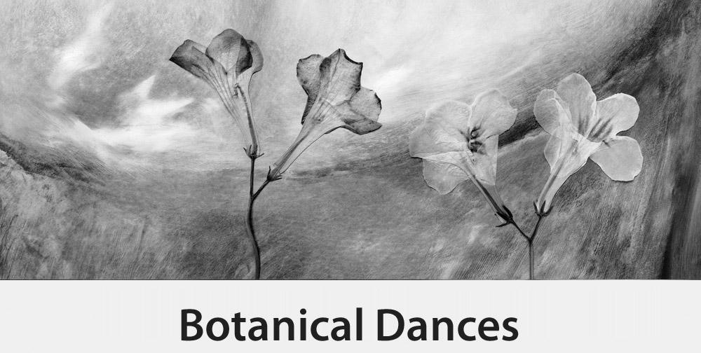 Botanical Dances