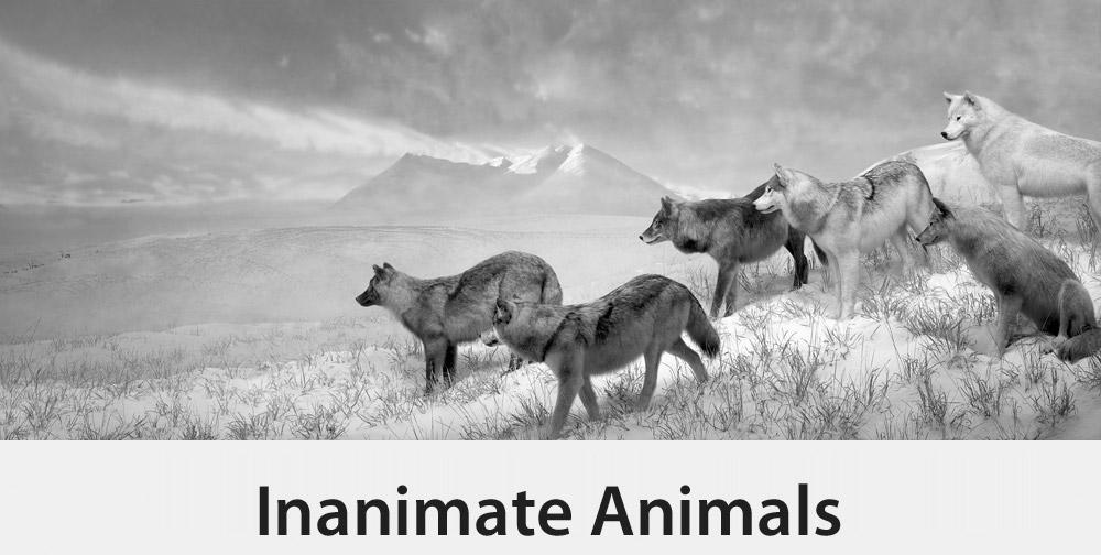 Inanimate Animals