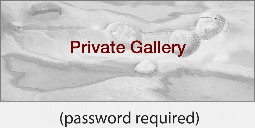 Private Gallery (password required)