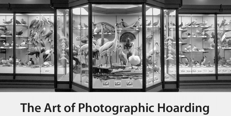 Copy of The Art of Photographic Hoarding