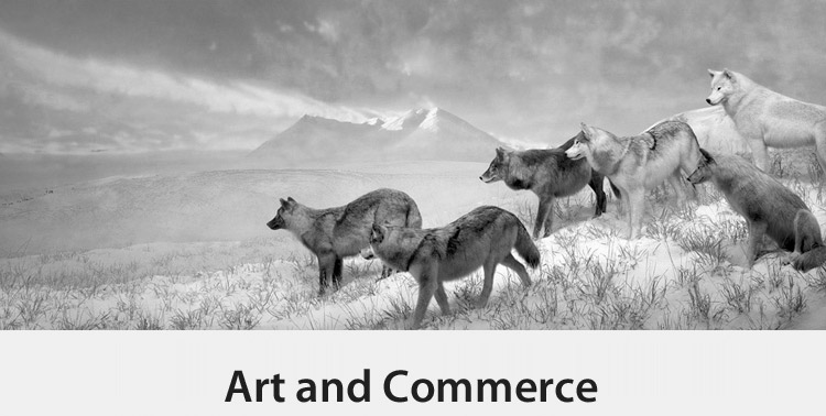 Copy of Art and Commerce