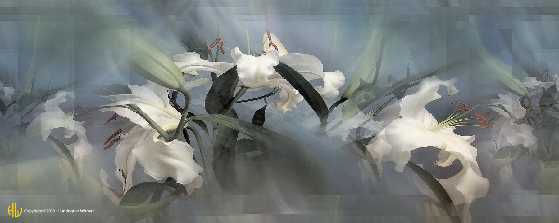 Lilies #52, 2003