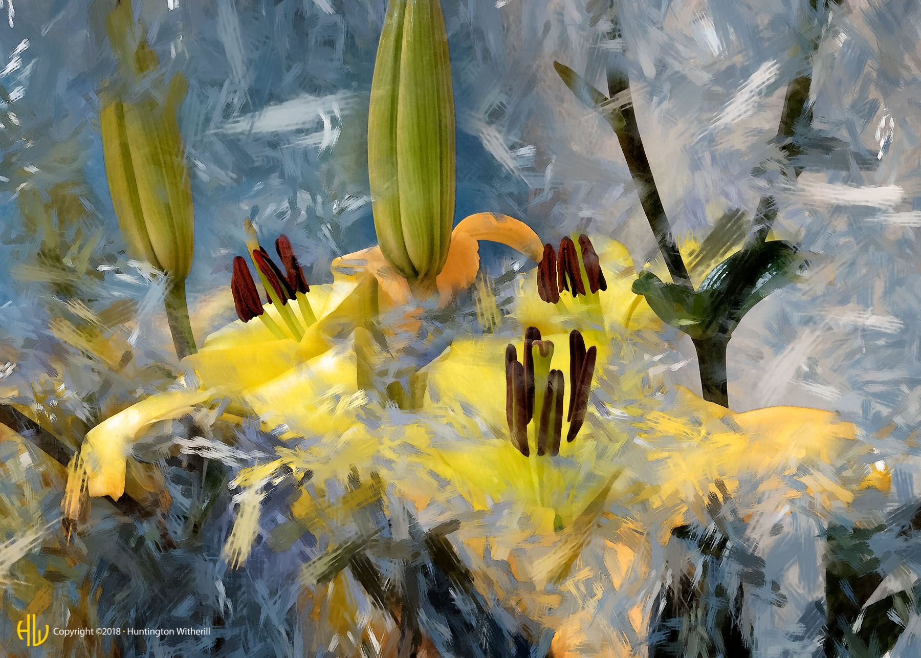 Lilies #87, 2007