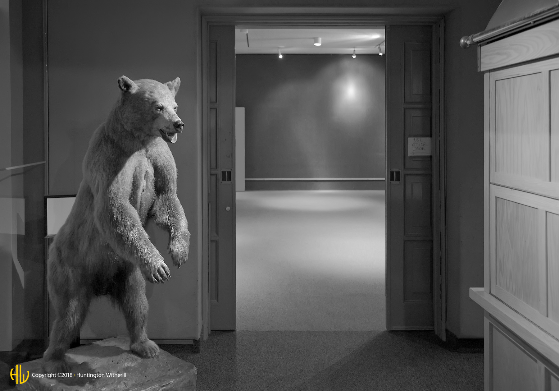 Bear and Closet, LACMNH, 2008
