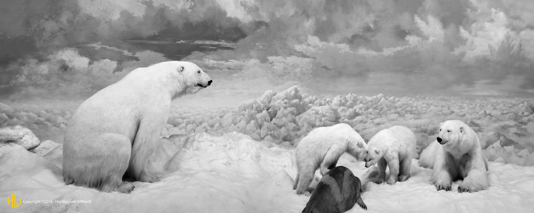 Polar Bears, CO, 2010