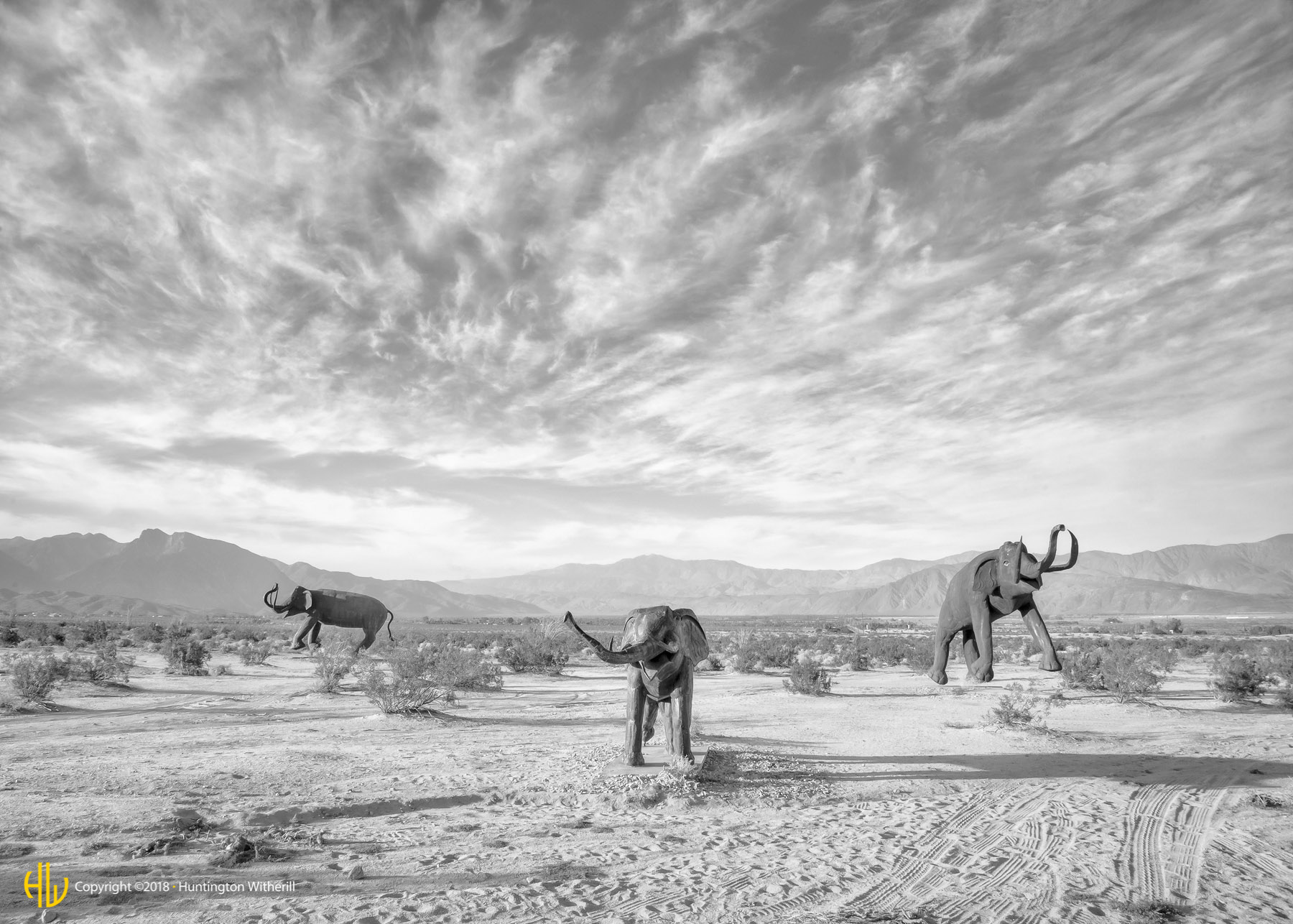 Dancing Woolly Mammoths, Borrego Springs, CA, 2014