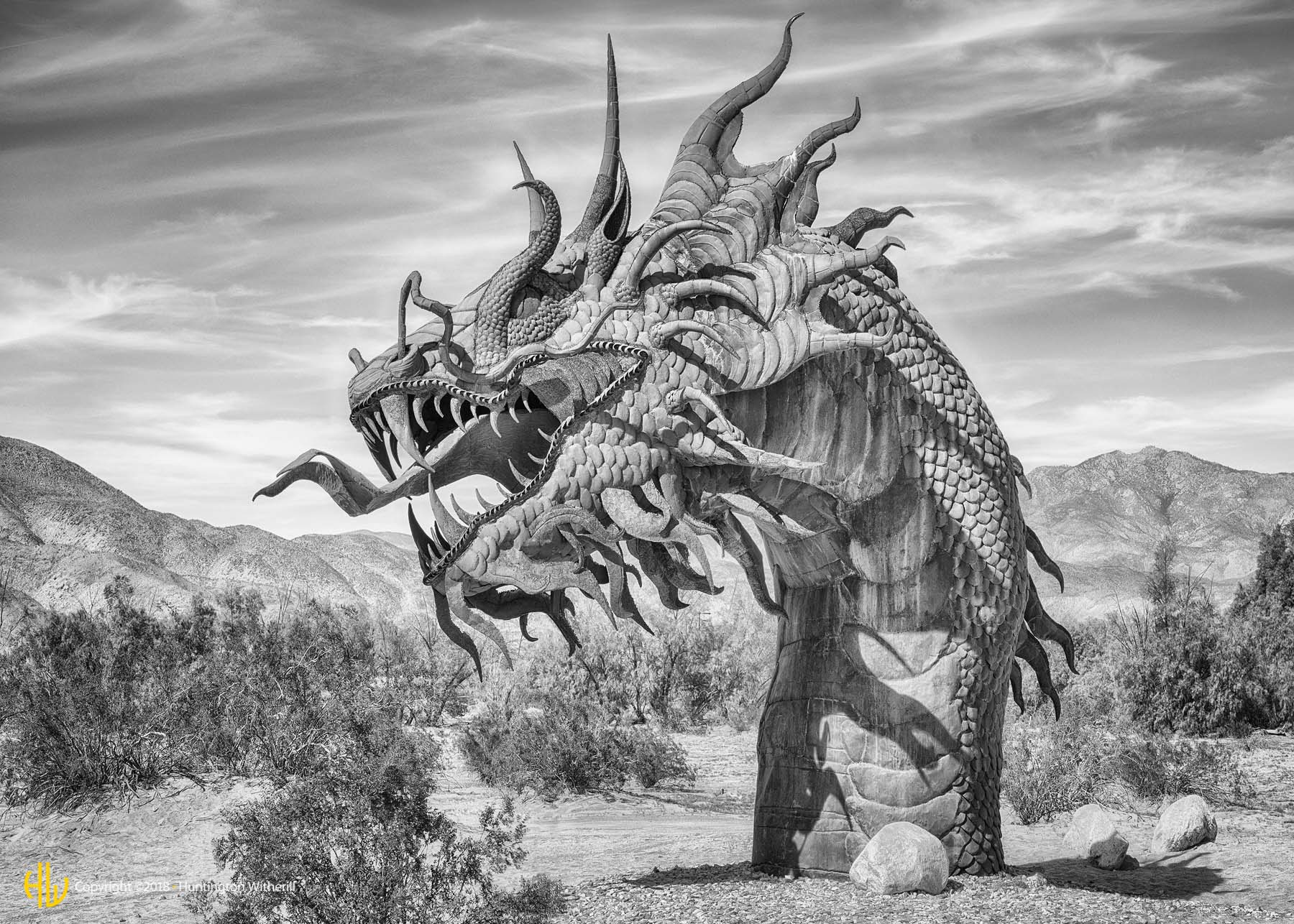 Serpent, Borrego Springs, CA, 2016