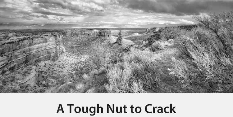 A Tough Nut to Crack