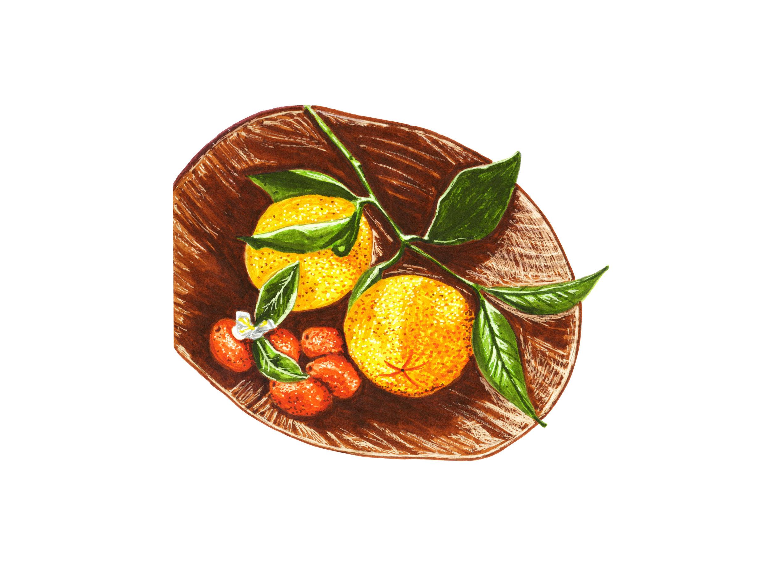 Oranges + Kumquats