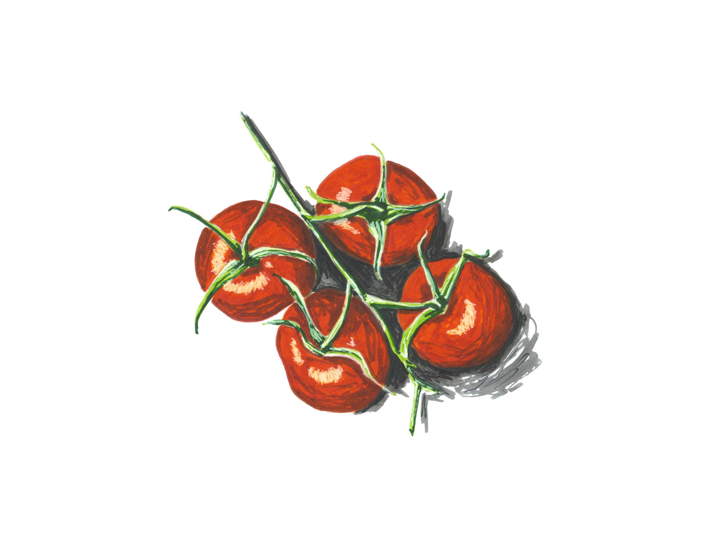 tomatoes-on-the-vine_website.jpg
