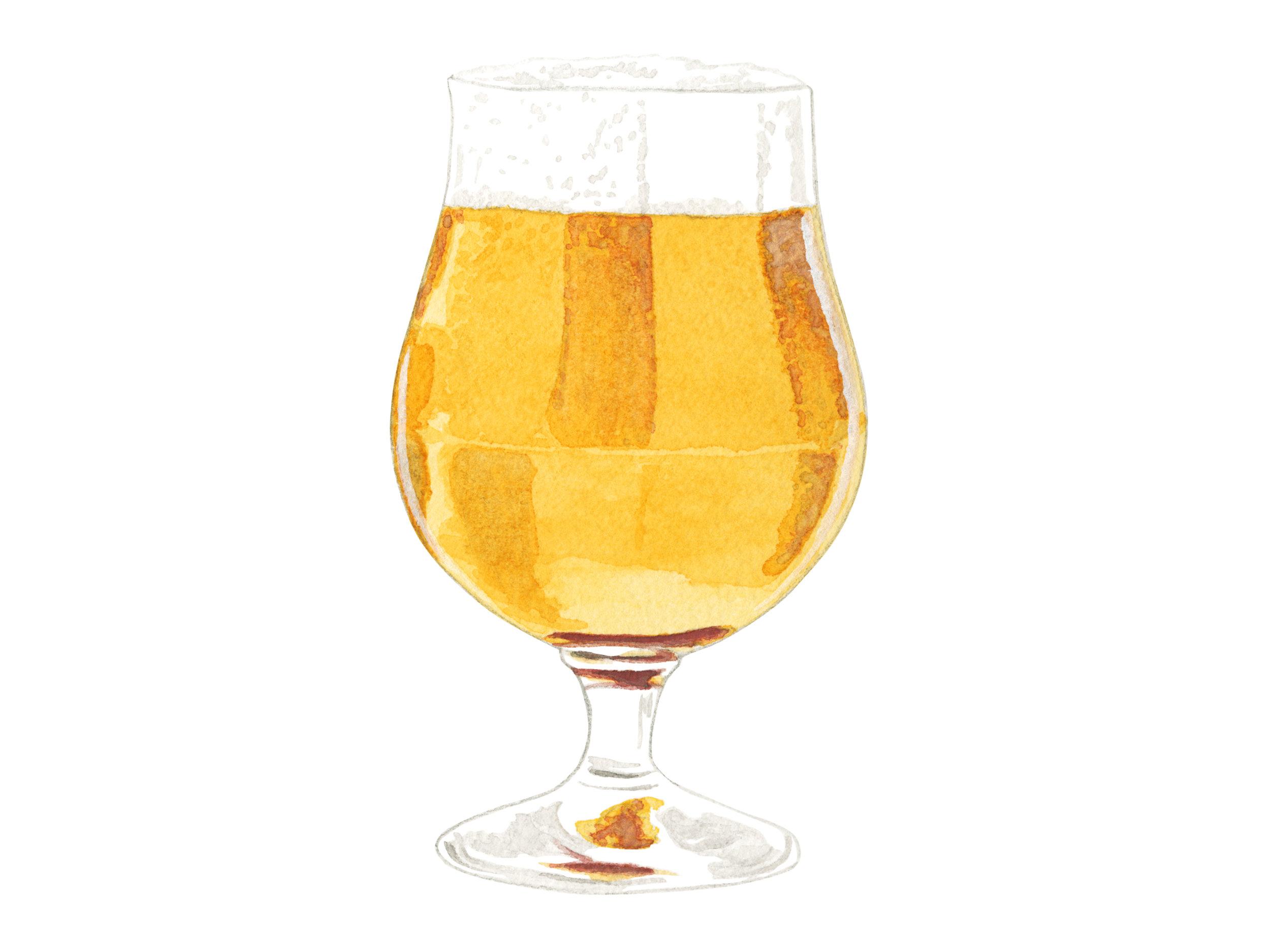 IPA | Craft Beer Series