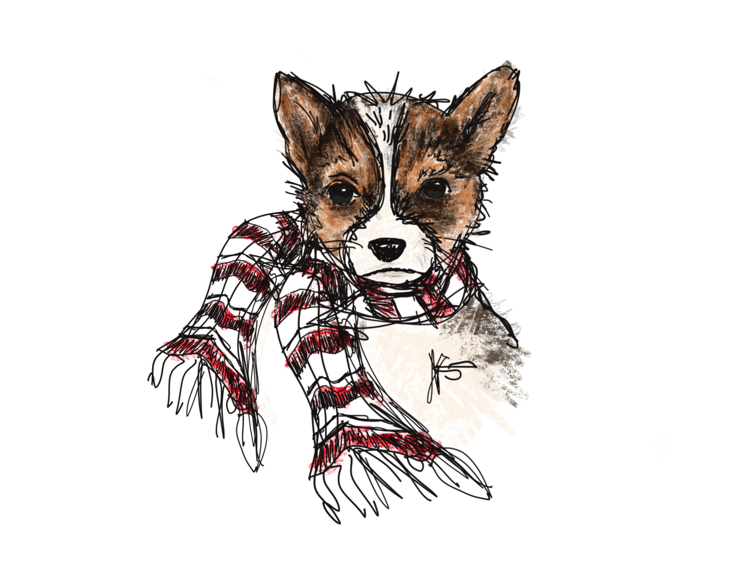 Cute Dog with Scarf
