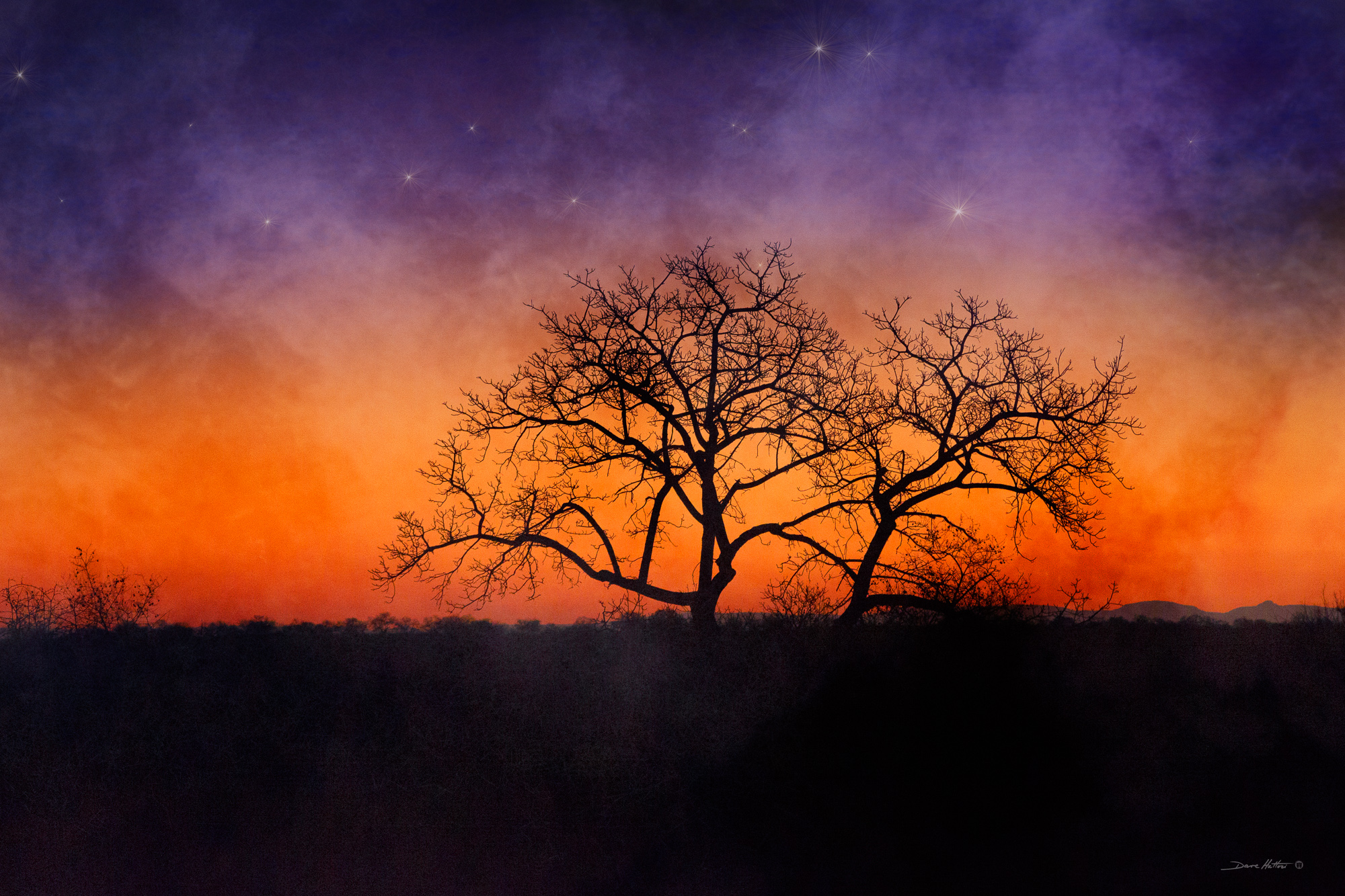 """African Twilight"""