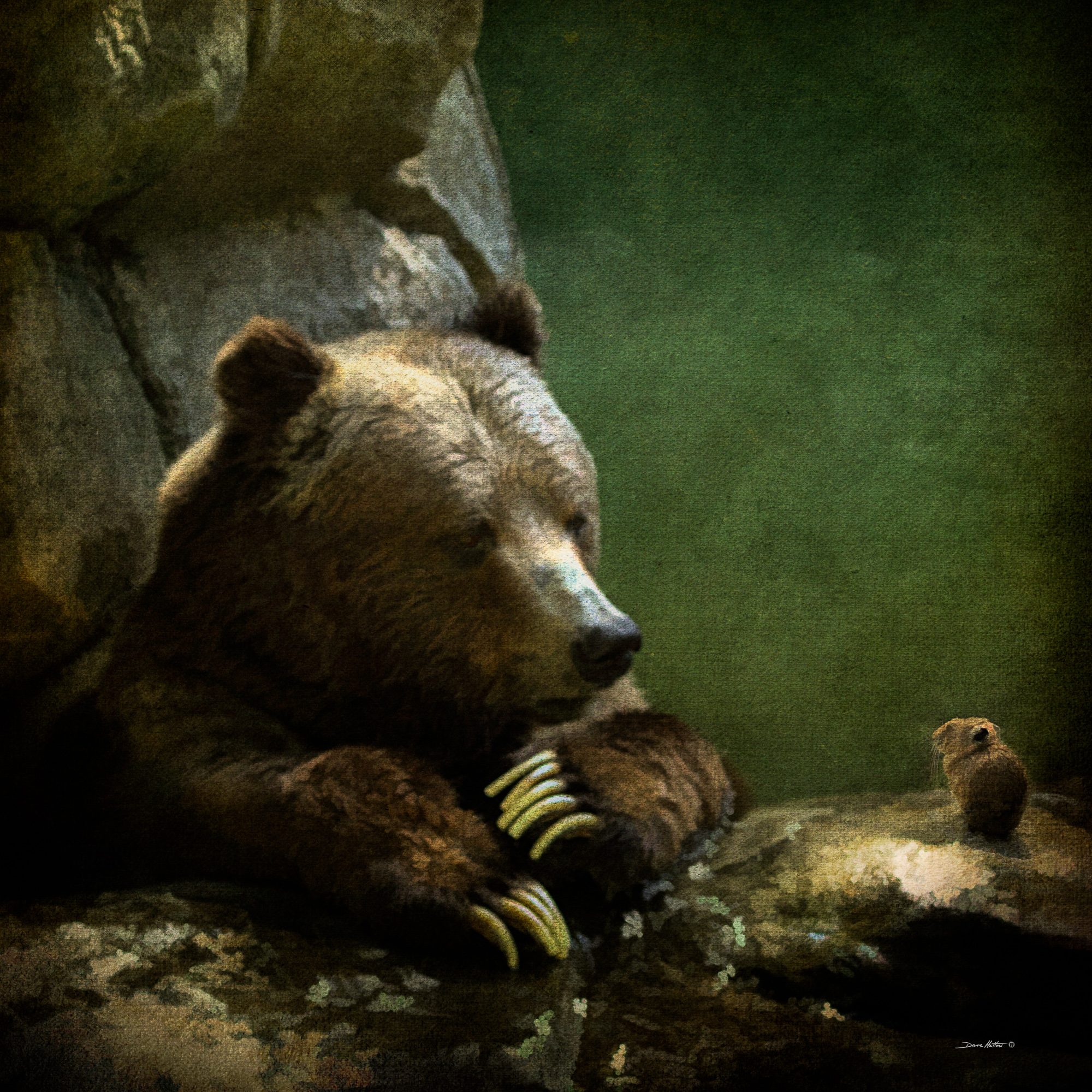 """Grizzly & Pika"""
