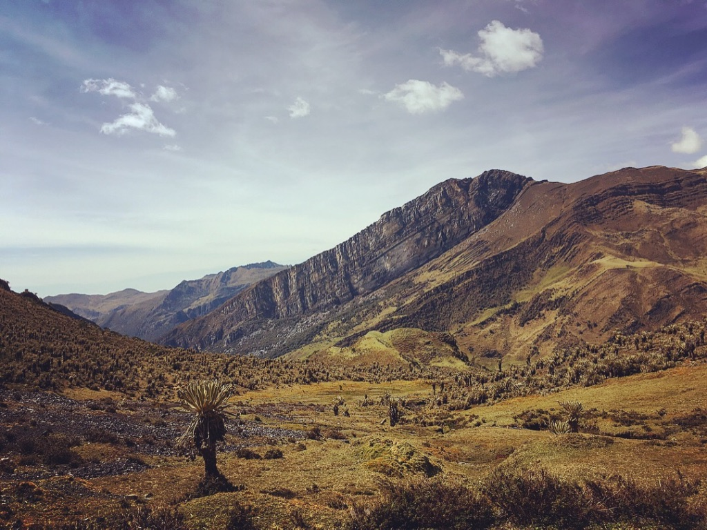 """Look in the mountains for the greatness of nature and find the humility of people."" An apt quote shared by one of my guides for a 4-day trek through El Cocuy National Park. Immense relief to be in the mountains after city hopping for a while 🏔🤸🏼‍♀️  #elcocuy   #boyacacolombia   #paramos   #frailejones   #glaciers   #climatechange   #nationalpark   #yearoftravel   #solofemaletravel   #travelblog   #pathunwritten"