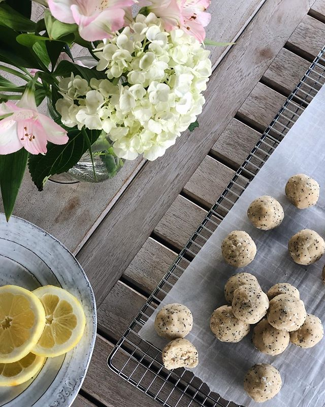 🍋🍋 LEMON POPPY SEED PROTEIN BALLS - * Makes 20 • 1/3 cup melted coconut oil • 1/4 cup honey • zest from 1 lemon • juice from 1/2 a large lemon • pinch of sea salt • 1/4 cup vanilla protein powder • 1 1/2 cups almond flour • 1/2 cup coconut flour • heaping 1/4 cup shredded unsweetened coconut • 1 tbsp poppy seeds  1. In a large bowl whisk together coconut oil and honey until smooth. 2. Add in lemon zest and lemon juice, stir until combined. 3. Add in almond flour, sea salt, coconut flour, shredded coconut, poppy seeds and protein powder, stir until combined. 4. Form dough into balls (about the size of a golf ball). Place in the fridge for an hour to set, or up to two weeks. 5. Enjoy 😘 #paleo #vegan #keto #justeatrealfood #proteinballs #whole30 #paleorecipes