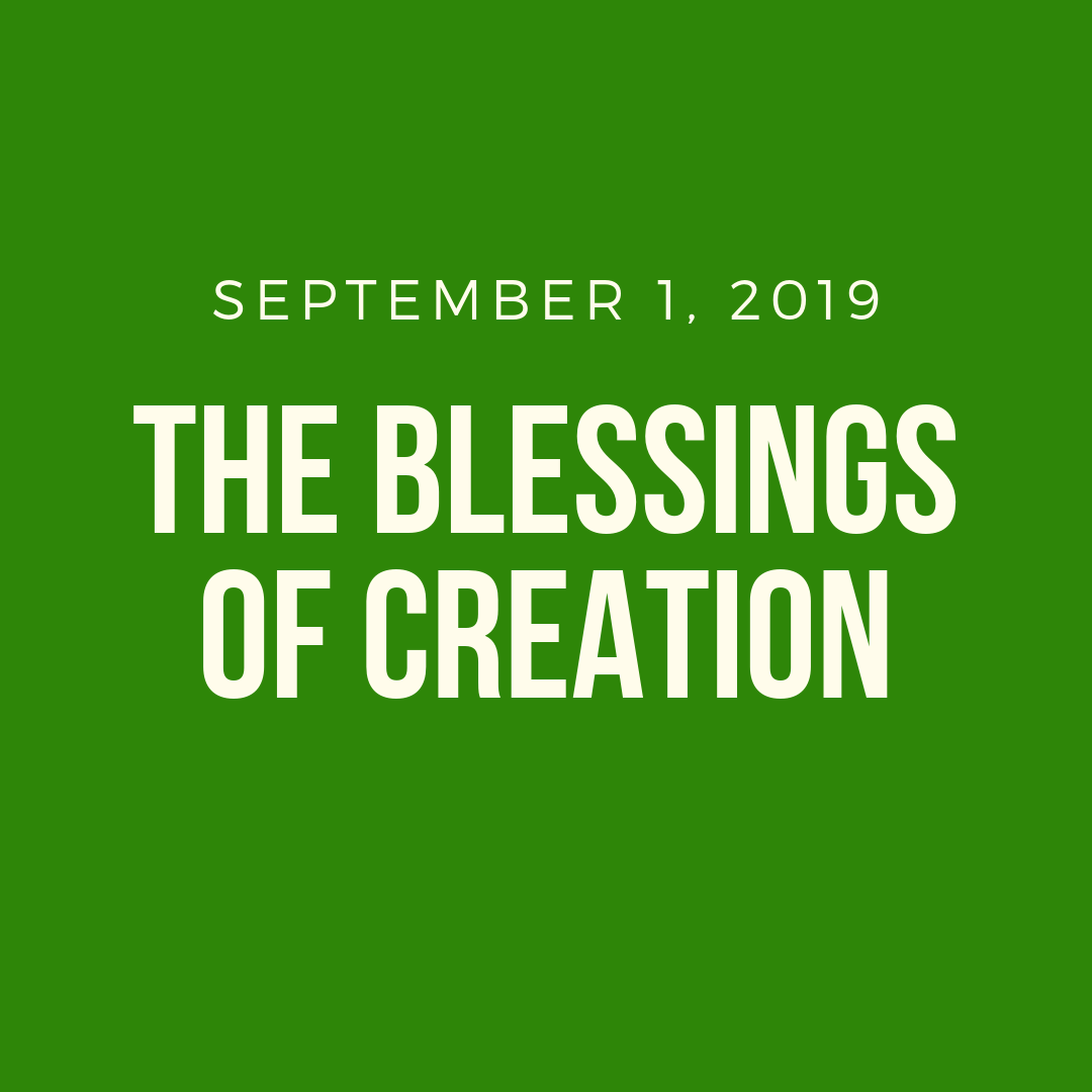 The Blessings of Creation