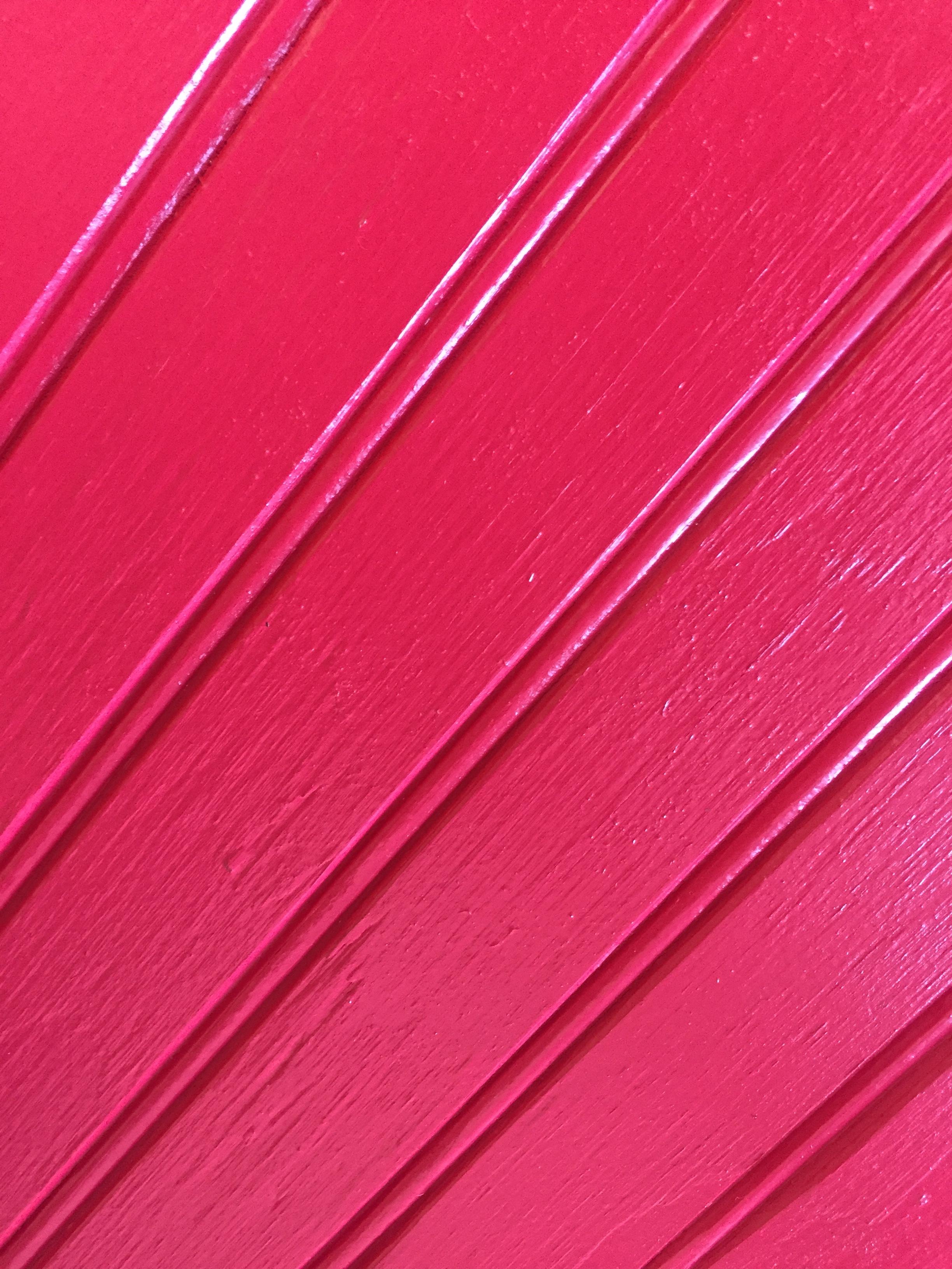 Red Wainscoat.JPG