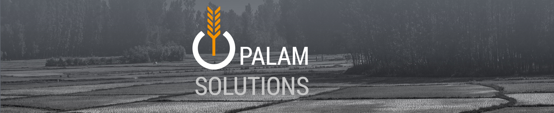 PalamSolution
