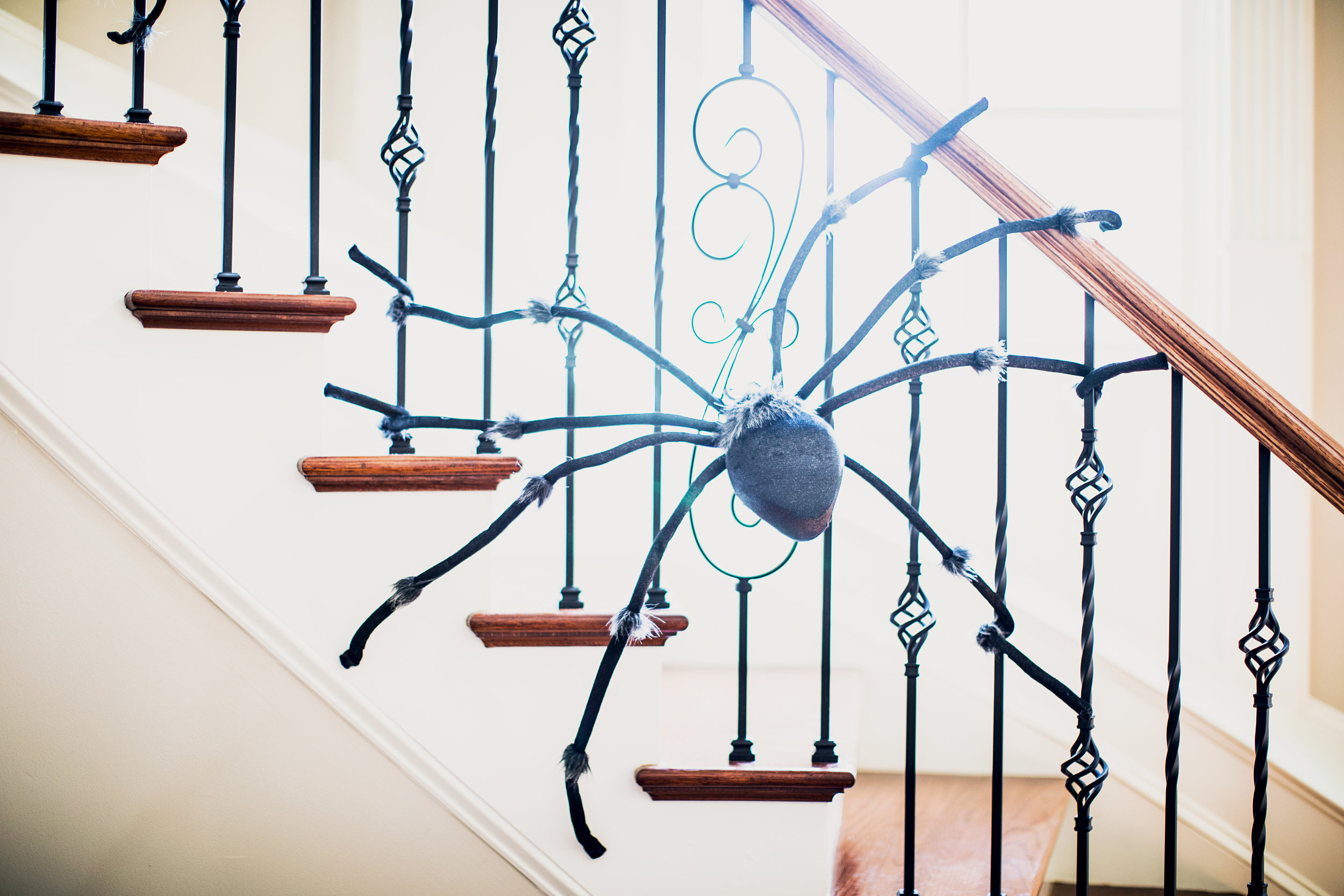 GoingGosnell.Spiders.Foyer.JPG