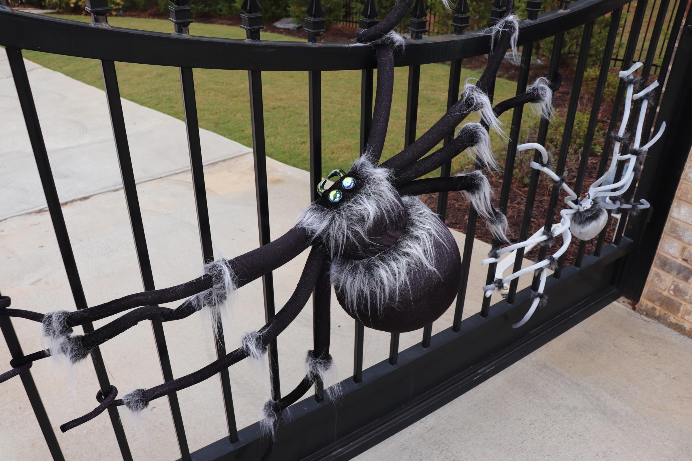 GoingGosnell.Spiders.JPG