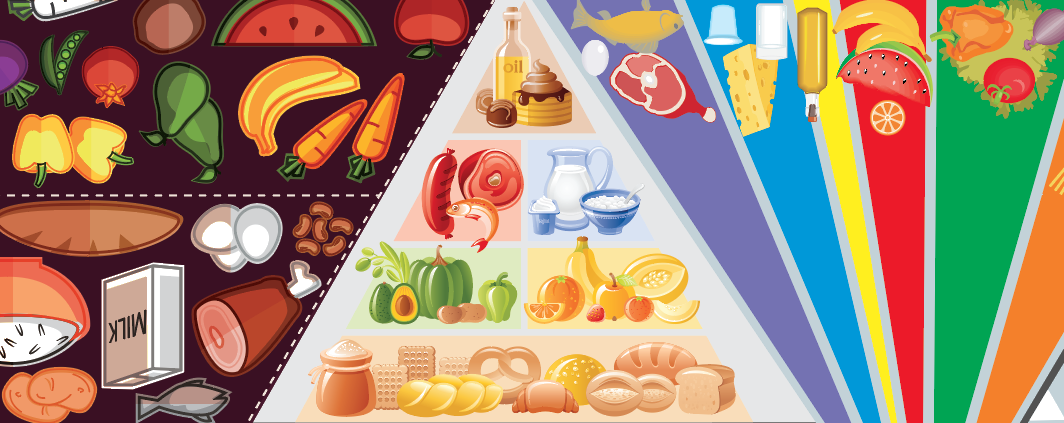 Dietary Guidelines 101 The Nutrition Coalition