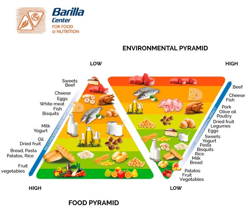 environmental-pyramid.jpeg