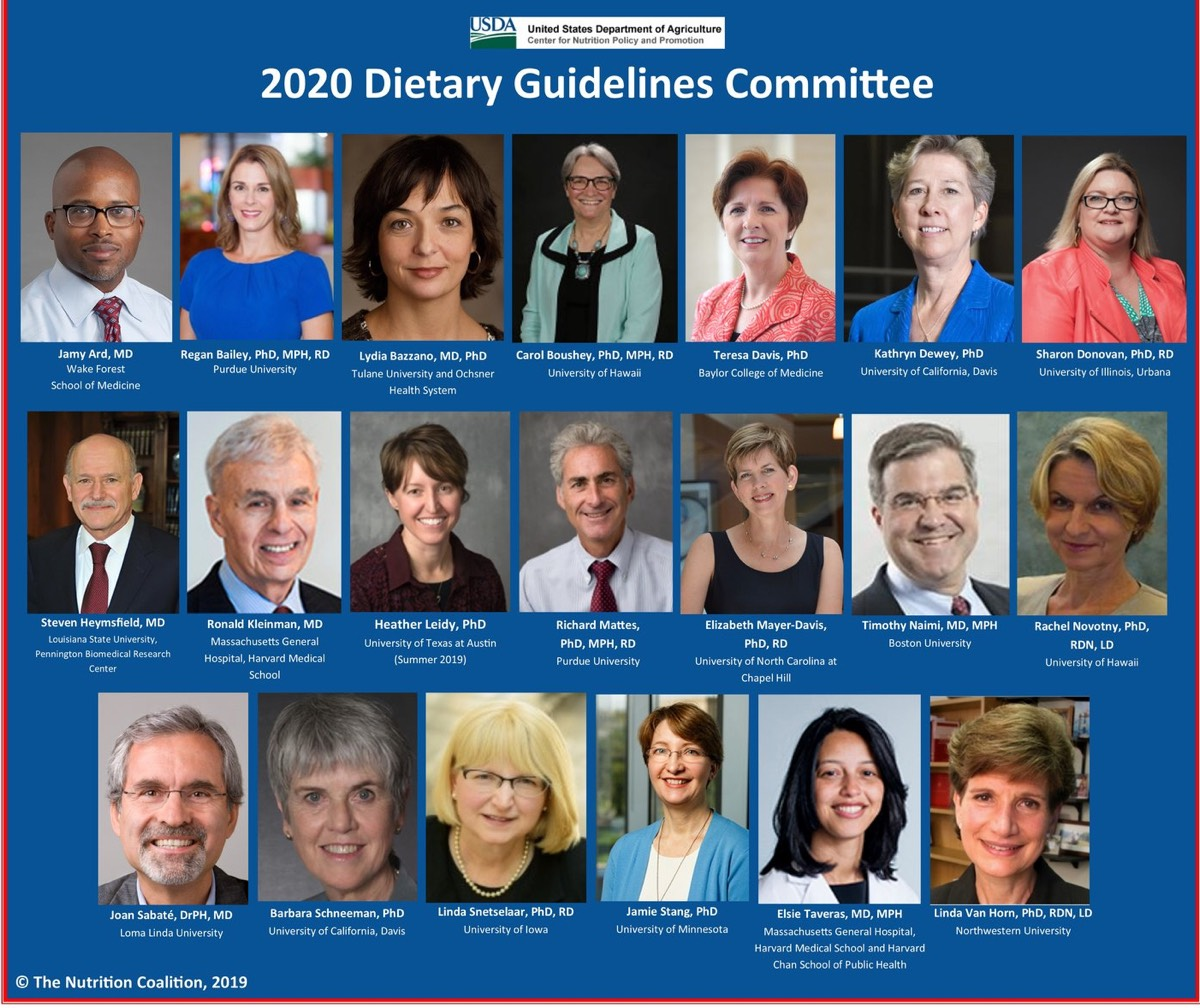 Best Meal Replacement Shakes For Weight Loss 2020 The 2020 Dietary Guidelines Committee: Who Will Stand Up for