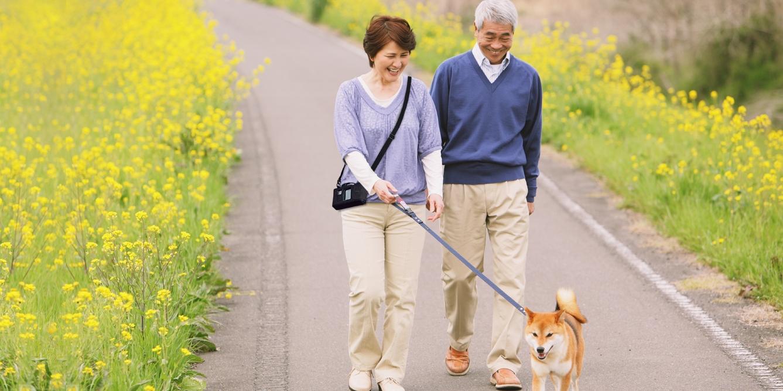 1920x667_homepage_couple_dog_2.jpg