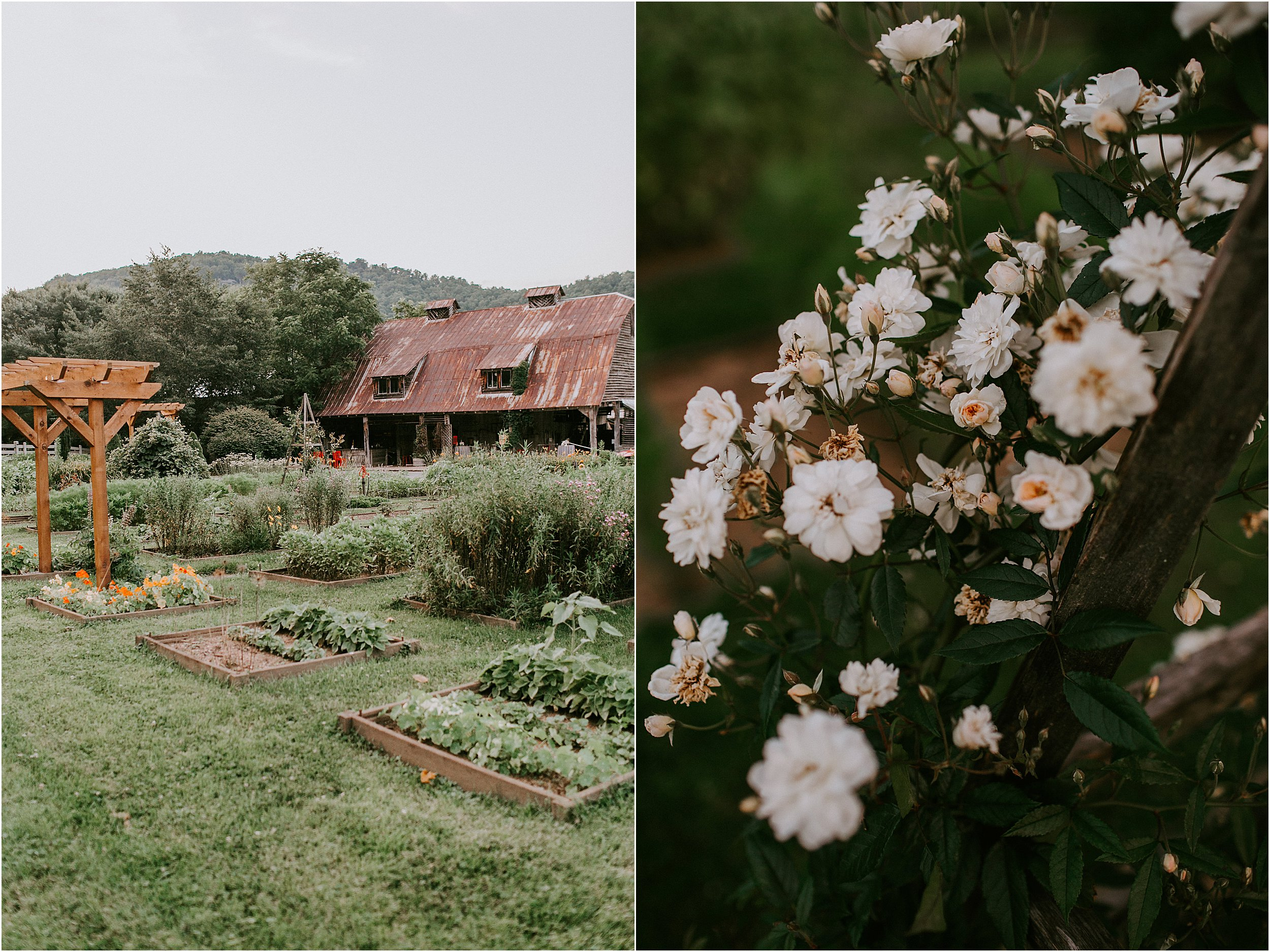 Mast-Farm-Inn-Mountain-Wedding_0074.jpg