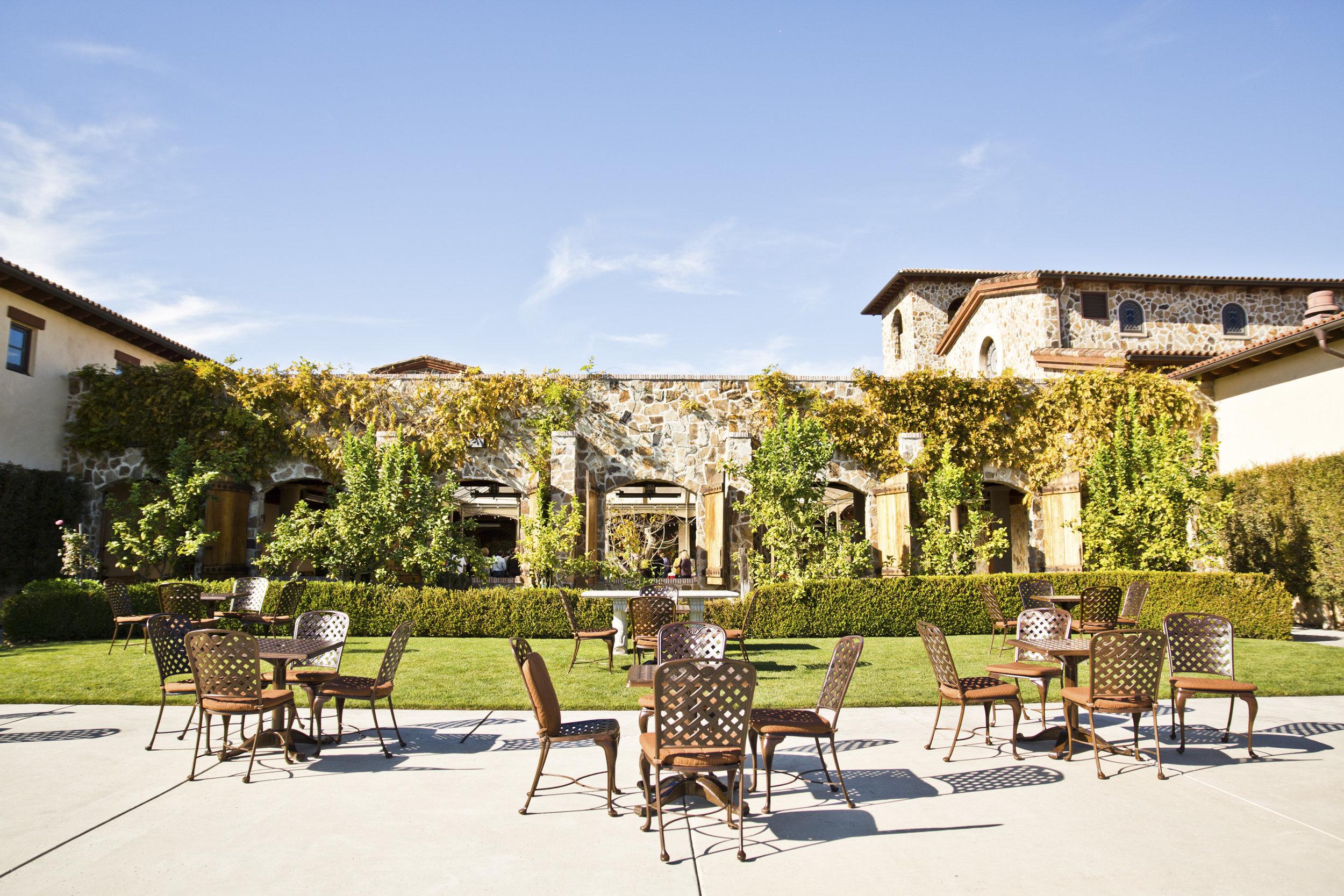 Vineyard Vista.jpg