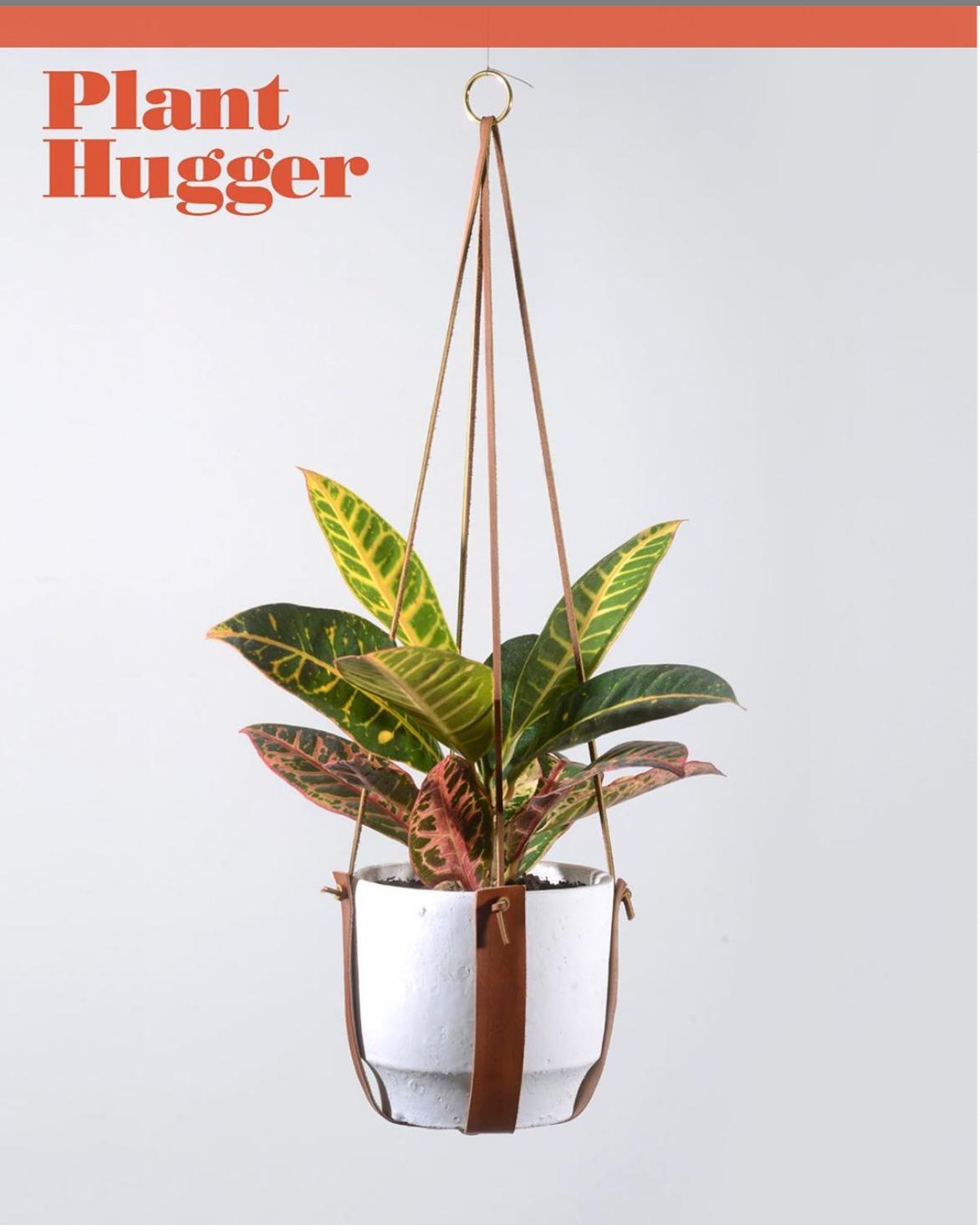 Leather plant hangers