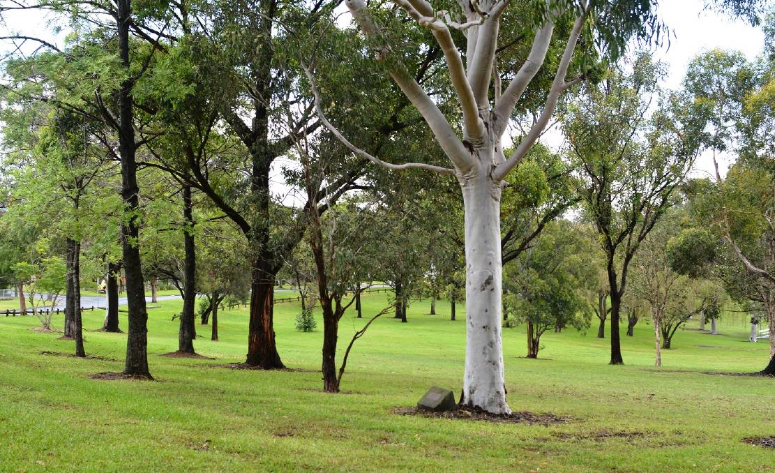 INPUT: Council wants community feedback and ideas into how to improve Stevenson Park in Mayfield West.